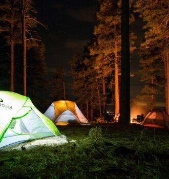 Zelte im Wald